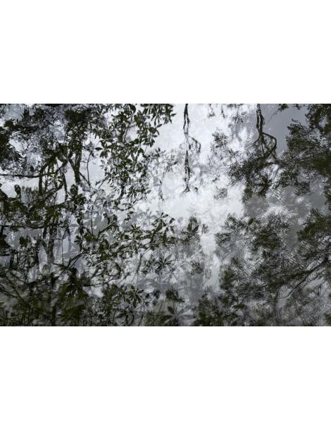 Terres. Eric Bourret©