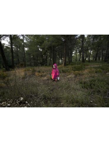 Prémonition, Cécile Menendez