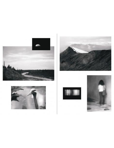 Photographies Frédérique Dimarco©