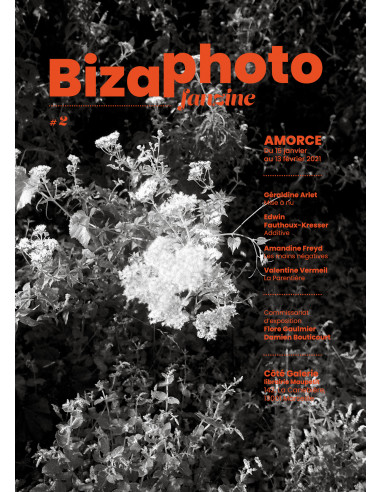 Bizaphoto Fan Zine2